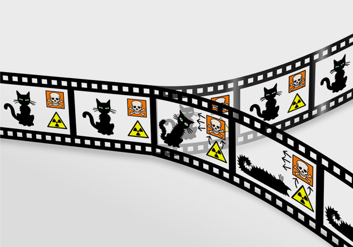 »Schrödingers Katze«, Schemagrafik
